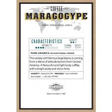 Кафе на зърна - MARAGOGYPE - 500 гр.